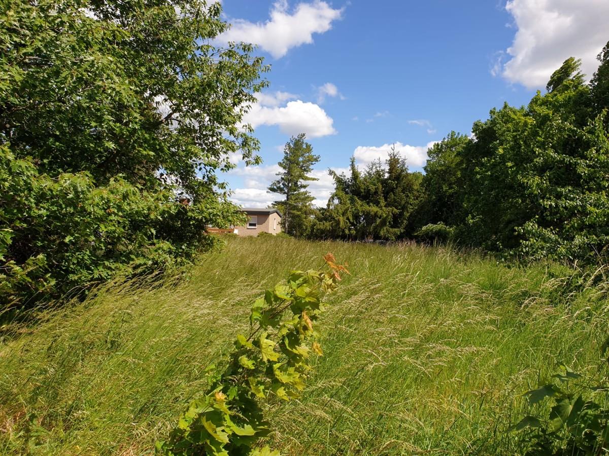 PROVISIONSFREI | Bauträgerfreies 1.308 qm großes Grundstück
