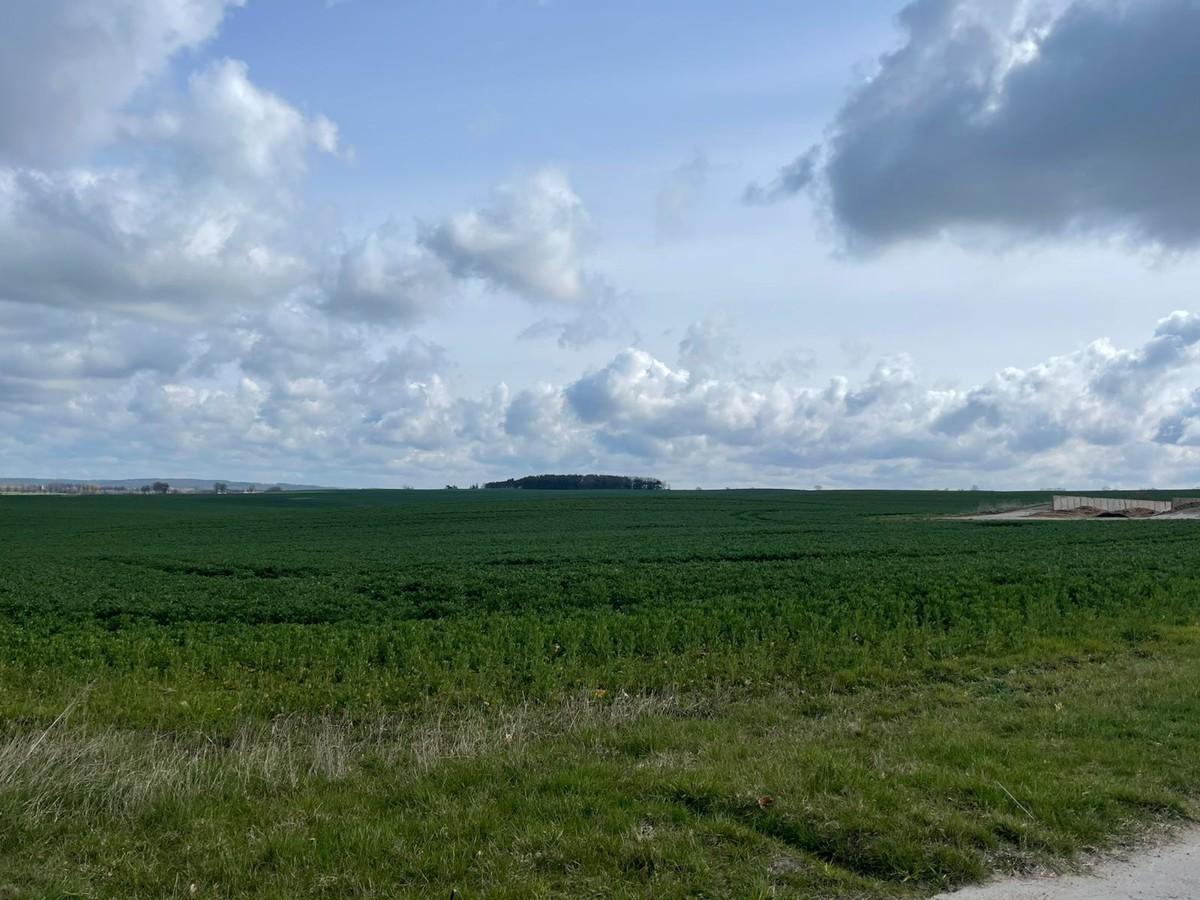 AB SOFORT | Provisionsfreie Landwirtschaftsfläche mit Potenzial