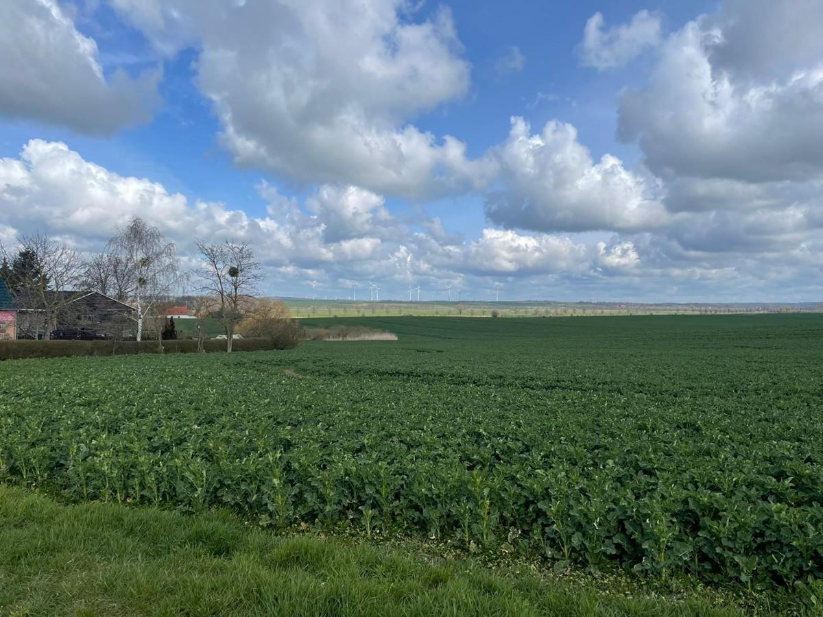 AB SOFORT   Provisionsfreie Landwirtschaftsfläche mit Potenzial