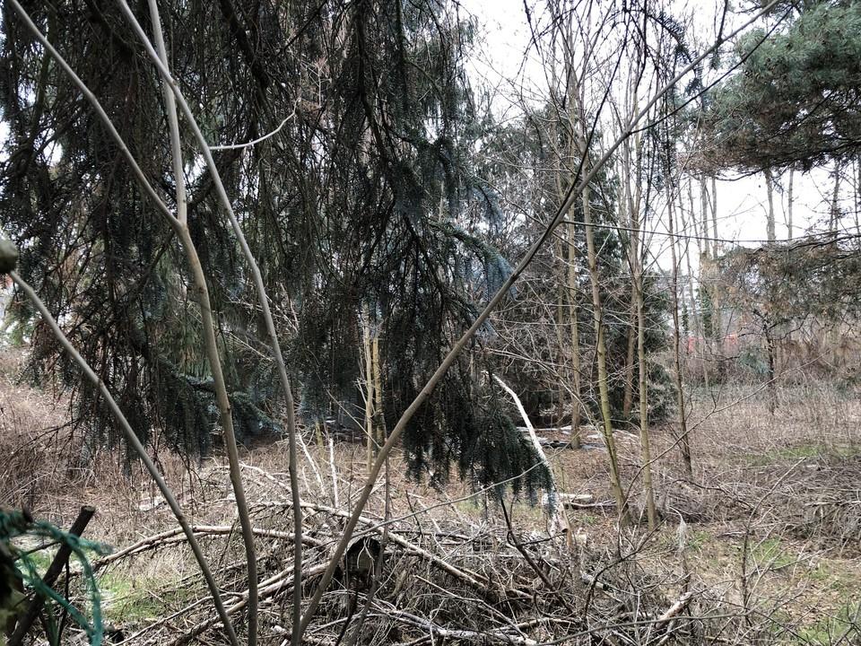 RESERVIERT |Hinterliegergrundstück zum Teilen in kleiner Seitenstraße von Karow