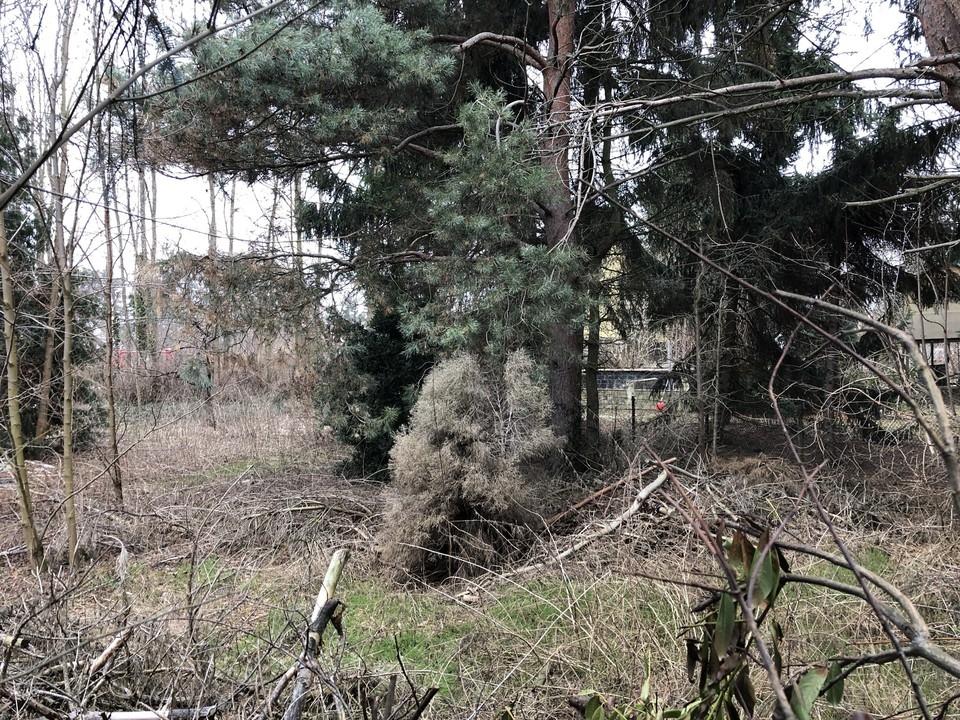 BAULAND  Hinterliegergrundstück zum Teilen in kleiner Seitenstraße von Karow