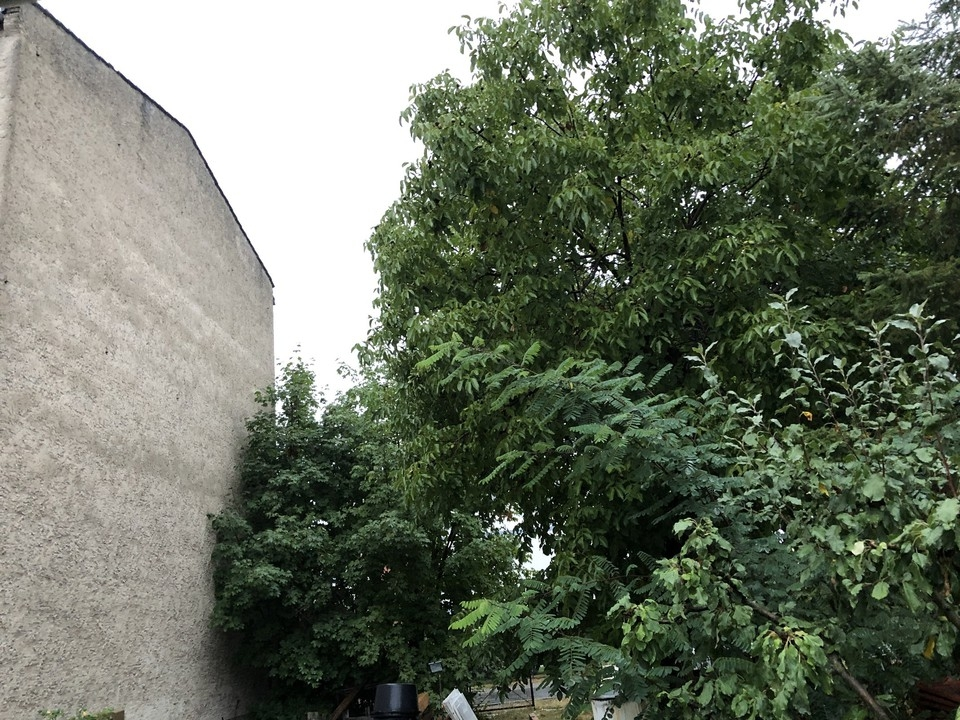 AB SOFORT | Baugrundstück im grünen Oranienburg